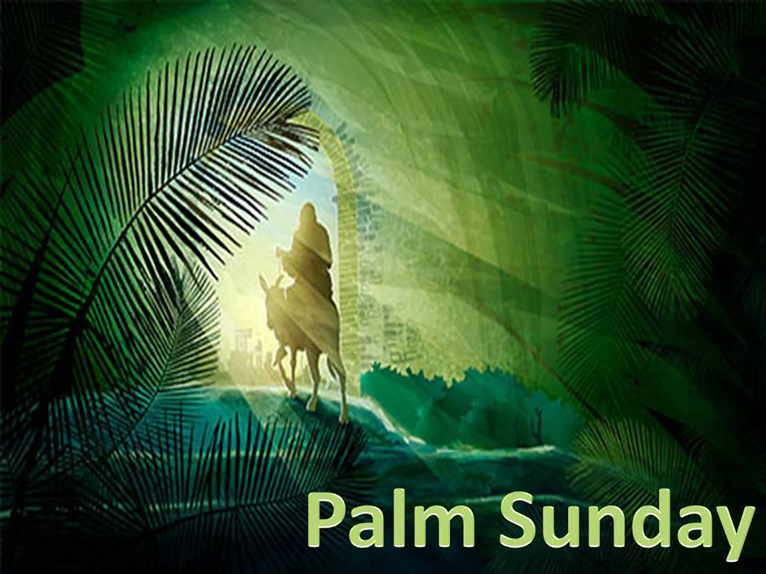 Palm Sunday image for website